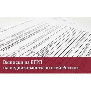 Способы получения информации из ЕГРП.  Как быстро получить сведения  в электронном виде