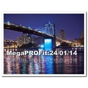 Бизнес-стимулятор MegaPROFit представят на пресс-конференции