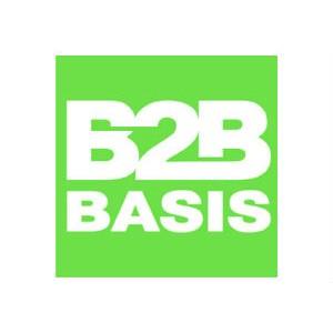 B2B basis запускает новый формат: клубные Networking встречи одновременно в 10+ городах России