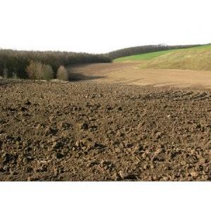 В Россошанском районе незаконно нарушен плодородный слой почвы