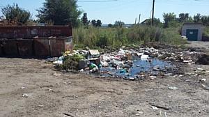 Воронежские активисты ОНФ добиваются наведения порядка в сфере вывоза бытовых отходов в Семилуках