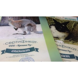 «Крошка Ру» - один из опекунов Ленинградского зоопарка