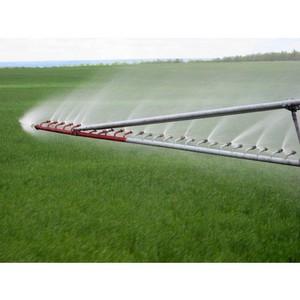 О снижении показателей качества почв земель сельскохозяйственного назначения в Ростовской области