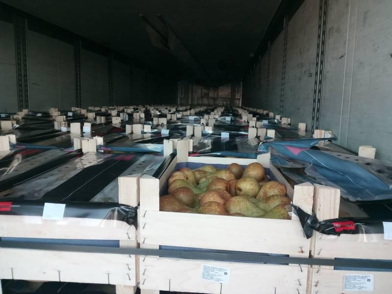 Белорусские яблоки превратились в польские груши