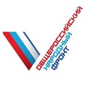 Представитель ивановского штаба ОНФ принял участие в выборах в Госдуму