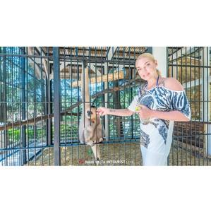 В отеле «Ялта-Интурист» Волочкова спрашивала у обезьян, а делают ли они шпагат?