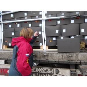Усиленный контроль за ввозом подкарантинной продукции в Псковской области