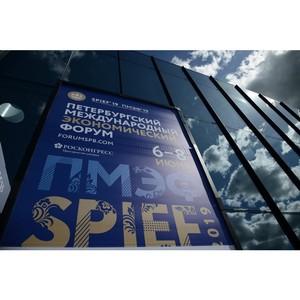 Петербургский международный экономический форум начинает работу