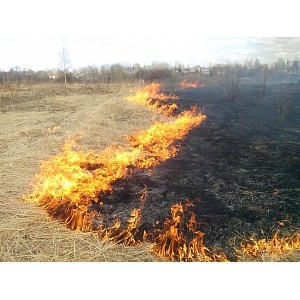 'илиал Ђ»вэнергої напоминает: соблюдайте меры пожарной безопасности вблизи энергообъектов