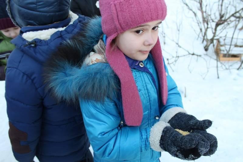 Активисты ОНФ в Мордовии провели акцию «Покорми птиц»