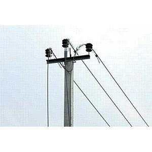 «Электрические сети ЕАО» успешно справляются с непогодой