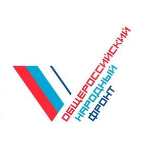 Активисты ОНФ добились ликвидации крупной свалки в Губарево