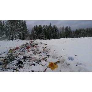 Активисты ОНФ в Коми обнаружили свалку отходов в лесной зоне села Куниб Сысольского района