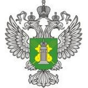 Инспекторы Управления Россельхознадзора по НСО предотвратили ввоз зараженных цветов на территорию РФ