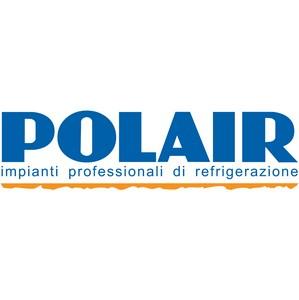 АО «Снайге», входящее в группу компаний «Полаир», лучший экспортер Литовской Республики в 2012 году