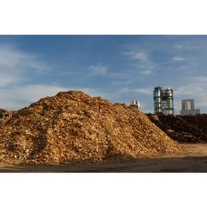 Kastamonu поддерживает инициативу Правительства РФ по организации биржевой торговли лесоматериалами