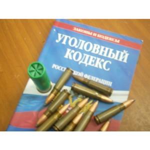 В Зеленограде возбуждено уголовное дело по факту незаконного хранения оружия