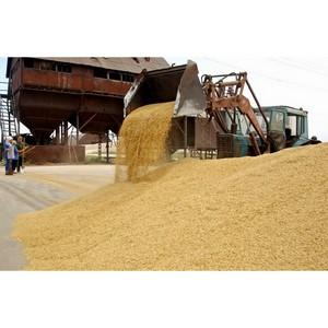 Неправильное хранение может привести к порче зерна