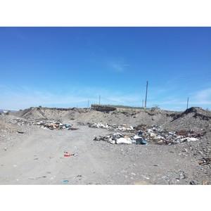 Промежуточные итоги реализации проекта ОНФ «Генеральная уборка» в Республике Тыва