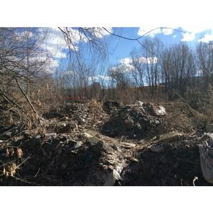 Активисты ОНФ выявили факт экологического ущерба на 12 млн рублей от свалки в «Долина реки Сетунь»