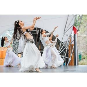 В Сочи Парке выступит знаменитый турецкий ансамбль «Огни Анатолии»