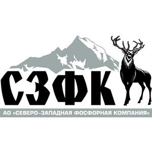Владимир Путин поздравил АО«СЗФК» с выходом на проектную мощность первой очереди ГОКа «Олений Ручей»