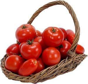 Импортные томаты и кабачки с опасным вредителем отправлены на утилизацию