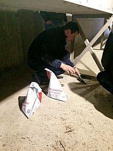 На одном из речных элеваторов Астрахани обнаружена амброзия