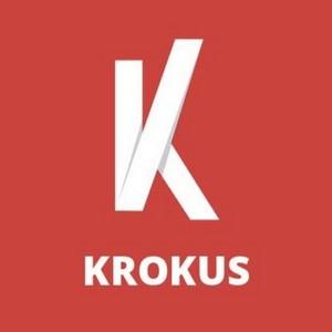 Веб дизайн студия Крокус запускает корпоративный сайт с описанием IT-услуг в Киеве