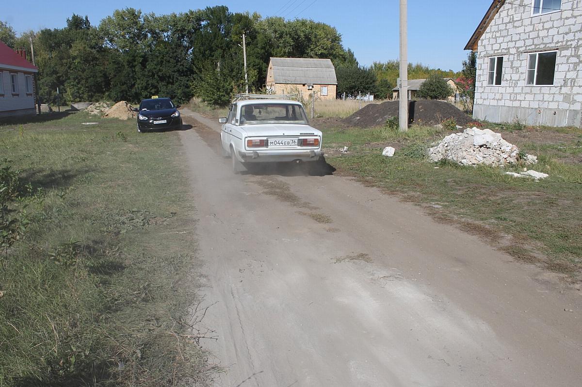 Воронежские активисты ОНФ провели рейд по дорогам Аннинского района