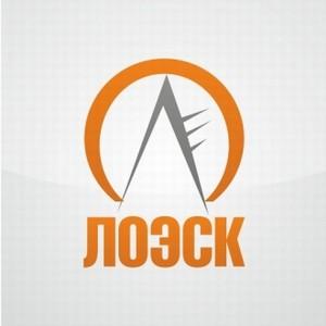 ОАО «ЛОЭСК» подключило к сетям 1700 потребителей в Ленобласти