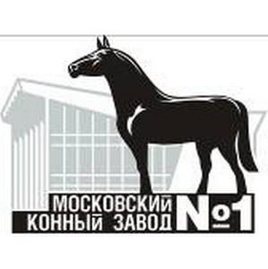 Московский конный завод №1 провёл Кубок Национального конного парка