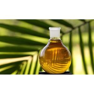 Только экологически устойчивое пальмовое масло