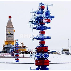 Ямало-Ненецкий автономный округ — перспективы развития добычи и переработки углеводородного сырья