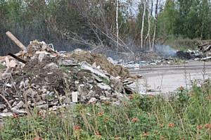 Активисты ОНФ предлагают ограничить проезд транспорта к местам нелегальных свалок около Иваново