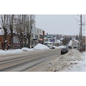 Воронежские активисты ОНФ проверили качество уборки снега в Богучаре