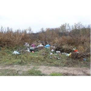 Воронежские активисты ОНФ обнаружили свалку опасных отходов в Богучарском районе