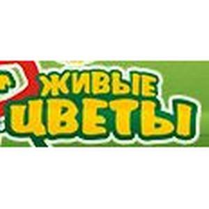 """Интернет-магазин """"Живые цветы"""""""