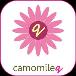 Мобильное приложение Hello Next от CamomileQ теперь и в российском AppStore!