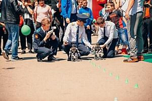 Марафон для спортсменов, мультгероев и даже роботов: в Ставрополе прошёл «Зелёный марафон» Сбербанка