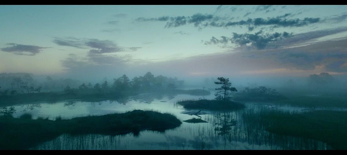 Международные сборы фильма «Русалка. Озеро мёртвых» превысили $1 млн