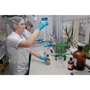 В Волгоградской области за апрель 2017 г. сертифицировано более 134 тонн семян