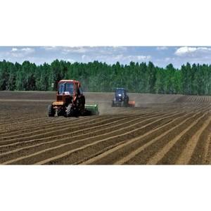 Аграрии Дона прошли экваторный рубеж весенне-полевых работ