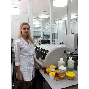 О заключении соглашения на проверку южного сырья для фасованного меда