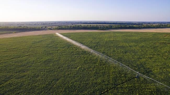 Холдинг «Солнечные продукты» вошёл в топ-25 крупнейших землевладельцев России
