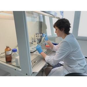 Научно-практический семинар по молекулярно-генетическим методам диагностики вредных организмов