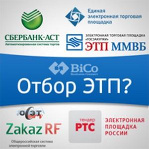 Интервью пресс-службы с Ульяновым А.С.: Рынку закупок нужен естественный отбор ЭТП.