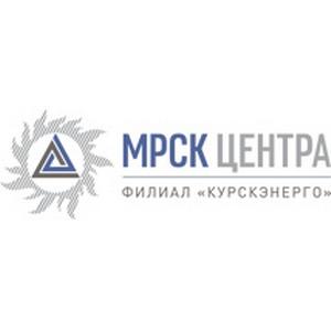 Работники Курскэнерго поздравили с Новым годом воспитанников реабилитационного центра