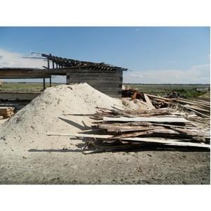 После рейда ОНФ и МЧС закрыто шесть нелегальных пилорам в месте возникновения лесных пожаров