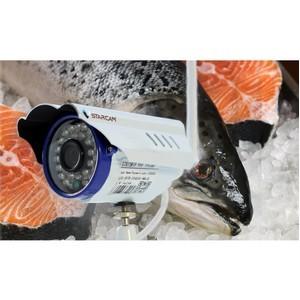 Системы СКУД и видеонаблюдения на рыбообрабатывающем производстве